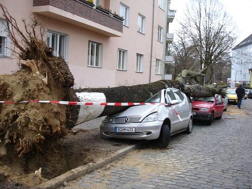 hurricane-damage-crush-1114788-o