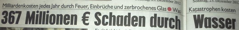 20121223_kronenzeitung